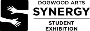 Synergy-Student-horz-sm